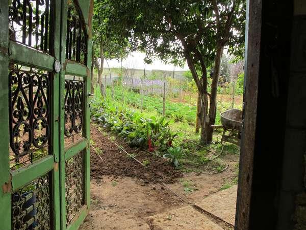 חיים שסטל - חקלאות וגינון אורבני בר קיימא